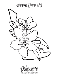 50 state flowers u2014 free coloring pages american flowers week