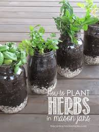 best 25 herb planters ideas on pinterest growing herbs indoors