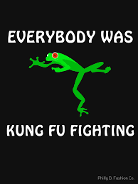 Funny Frog Meme - everybody was kung fu fighting funny frog meme t shirt men women