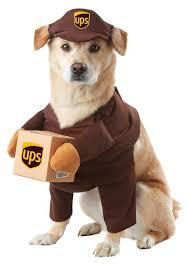 Target Mens Halloween Costumes Target Dog Halloween Costumes Photos Harrop Harrop