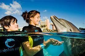 atlantis paradise island resort in the bahamas activities
