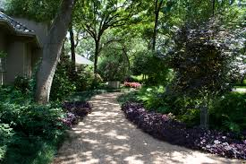 native texas plants for shade blog complete landsculpture