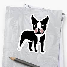 Boston Terrier Flag Boston Terrier Cartoon Dog
