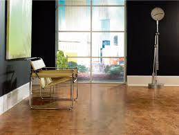 Cork Hardwood Flooring Wicanders Corkcomfort 11 2 3