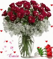 dozen roses dozen roses gifs tenor