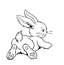 download animal rabbit color pages to print or print animal rabbit