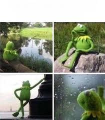 Meme Generator Forever Alone - kermit forever alone blank template imgflip