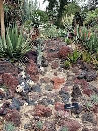Rock Dust Gardening Lava Rock Garden Lava Rock With Brick Edging Curb Appeal