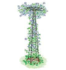 essex trellis for plant support