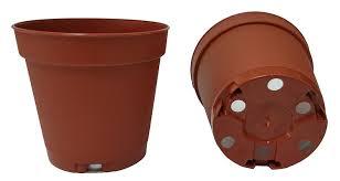 amazon com 40 new 2 inch plastic nursery pots pots are 2 inch