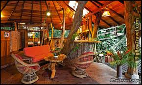 Cool Tree Houses Best Treehouse Hotels In The World Top 10