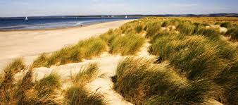 west wittering campsites best camping in west wittering sussex