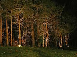 Landscape Lighting Trees Artistic Landscapes Low Voltage Landscape Lighting