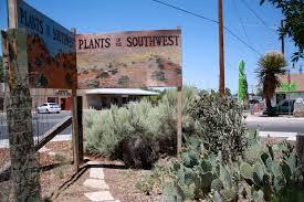 earth tones native plant nursery best new mexico plant nurseries good to grow
