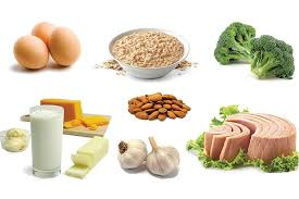 10 high protein foods role of protein in weight loss