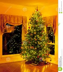 corner christmas tree christmas tree in living room corner with reflections royalty free