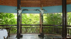 wedding arches cairns cairns wedding arches pá inicial