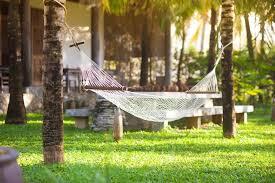 tips to hang backyard hammocks design idea and decorations