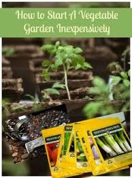 get started gardening 10 steps to start a vegetable garden
