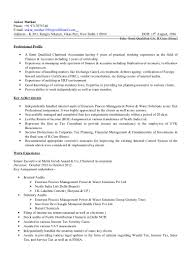 Senior It Auditor Resume Ankur Mathur Cv