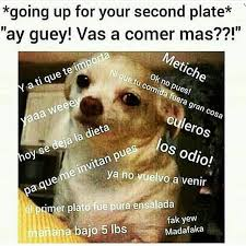 Mexican Thanksgiving Meme - metiche being cuban pinterest mexicans spanish and memes