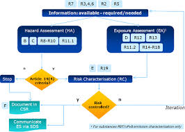 guidance on information requirements and chemical safety