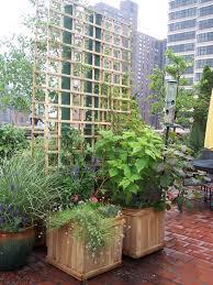 Box Garden Layout Box Garden Design With Sedum Roof Ideas Garden Box