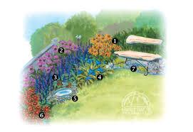 the butterfly garden perennial gardening