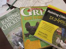 Backyard Chickens Magazine by Bedford Landings Blog Bedford Landings Blog Page 3 Of 35
