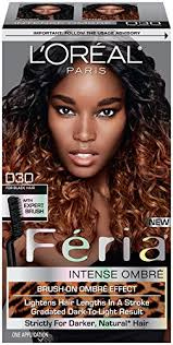 preference wild ombre on short hair amazon com l oreal paris feria brush on intense ombre effect hair