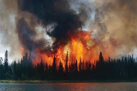 Definition Of Wildfire Intensity by Forests National Climate Assessment