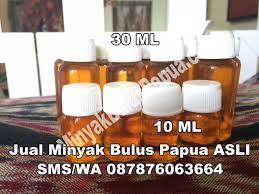 Minyak Bulus Asli Papua jual minyak bulus papua minyak bulus papua 100 original