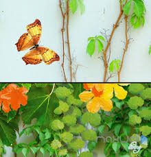 3d flower vine butterfly entire living room wallpaper wall mural 3d flower vine butterfly entire living room wallpaper wall mural art prints idcqw 000177