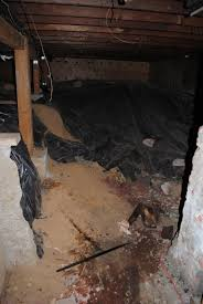 loftis manor adventures scary scary basement pictures