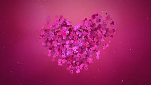 Wedding Backdrop Hd Romantic Flying Pink Rose Sakura Flower Petals Lovely Heart