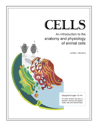 anatomy of animal cell choice image human anatomy learning