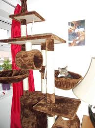 Large Cat Scratching Post How To Assemble Foxhunter Cat Tree Activity Centre Youtube