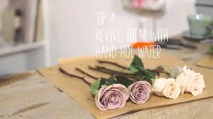 How To Make Roses Live Longer In A Vase Simple Solutions Make Flowers Last Longer Youtube