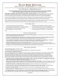 Sample Hr Executive Resume by 28 Sample Hr Resumes For Hr Executive Resume Samples For Human