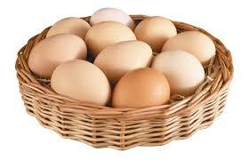 eggs clipart jaxstorm realverse us