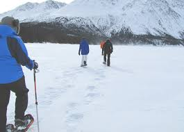 aurora borealis northern lights tours yukon snowshoeing nature tours yukon canada
