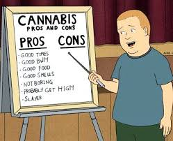 Bobby Hill Meme - bobby hill s pros and cons of cannabis trees