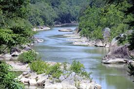 Kentucky national parks images 7 national parks to camp in this summer the national wildlife jpg