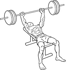 Top Bench Press Bench Press Exercise Add The King Of Chest Exercises To Your