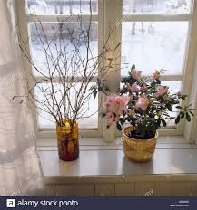 Branches In A Vase Still Life Of Pink Azalea In Pot Beside Vase With Branches Of