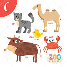 letter c cute animals funny cartoon animals in vector abc boo