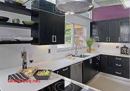 peindre porte cuisine peinture porte cuisine pour idees de deco de cuisine luxe peinture