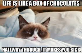 Grumpy Cat Meme Love - but our love of it always returns lolcats lol cat memes