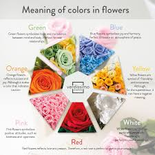 colour meaning the meaning of roses according to their colour verdissimo