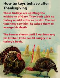 science how turkeys behave after thanksgiving